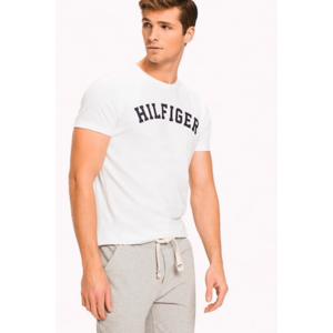 Tommy Hilfiger Pánské Logo Tričko - bílé Velikost produktu: L obraz
