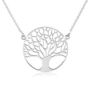 Stříbrný náhrdelník obraz