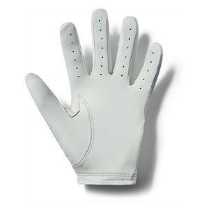 Dámské golfové rukavice Under Armour Women's Coolswitch Golf Glove obraz