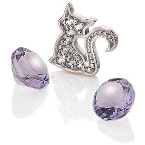 Hot Diamonds Element Kočka s ametysty Anais EX218 obraz