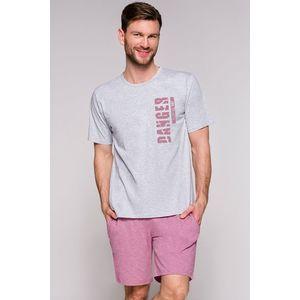 Pánské šedo-bordové pyžamo Karol obraz