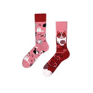 Červeno-růžové ponožky Playful Cat obraz