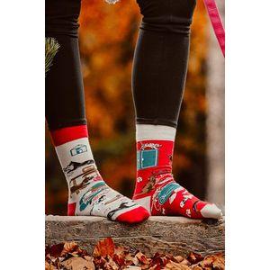 Šedo-červené ponožky Cat and Dog Life obraz