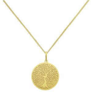 Praqia Pozlacený náhrdelník Strom Života KO6248_CU040_45_A (řetízek, přívěsek) obraz