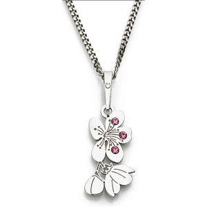 Praqia Originální stříbrný náhrdelník Cherry KO5034_RH (řetízek, přívěsek) obraz